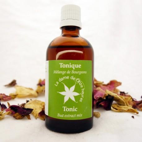 Gemmothérapie Synergies Tonique